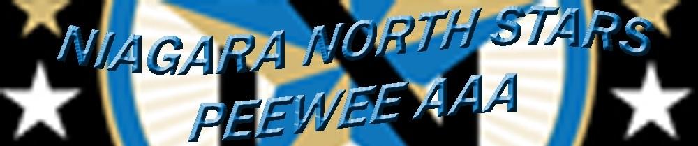 Niagara North AAA Major Peewee Stars